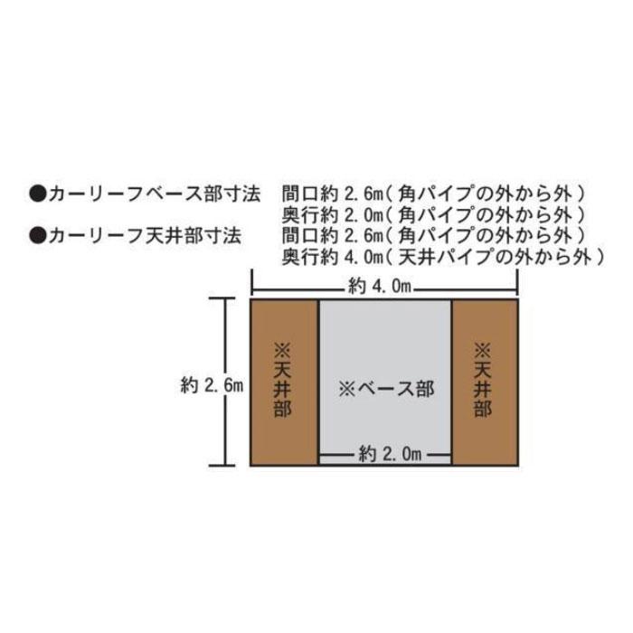 カーリーフ 幅2.5m奥行4m高さ2.1m キャノピー(角型) PEクロス生地
